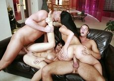 Swingers foursome sex.